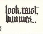 Look, Raist, Bunnies
