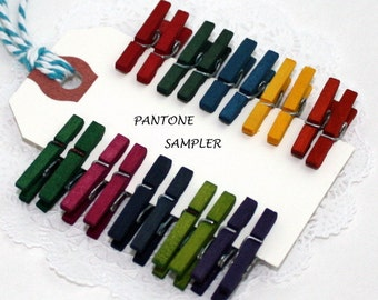 Mini Clothespins, Tiny Clothespins, Multi & Pantone Colors, Party Supplies, Christmas, Photo Clips, Gift Wrap, Weddings, Party Favors