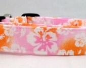 Tropical Hawaiian Orange and Pink Hibiscus Dog Collar