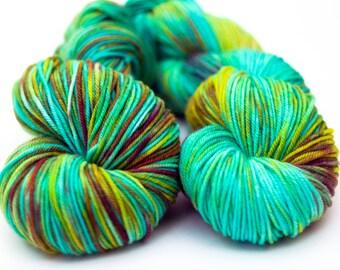 Hand Dyed Superwash Merino Yarn - DK
