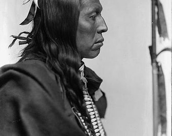 Chief Flying Hawk Native American Indian Chief image print reproduction