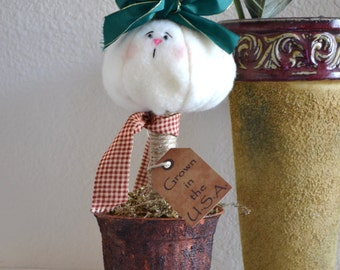 Easter Bunny in Pot Grown in the USA -