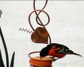 Oriole Feeder, Gardening, Feeders, Copper Art Vine, Copper Bird Feeders, Hanging Bird Feeder