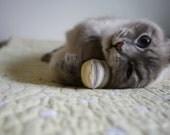 3 Tiny Summer Time Striped Catnip Balls cat toys sale