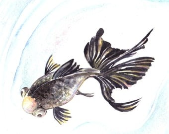 Original 10X8 Watercolour black koi.. Not a print ..original painting red fish black fish
