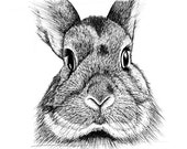Bunny Face (Limited Edition PRINT)