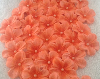 Cake Decoration Flowers Blossoms Peach / light orange