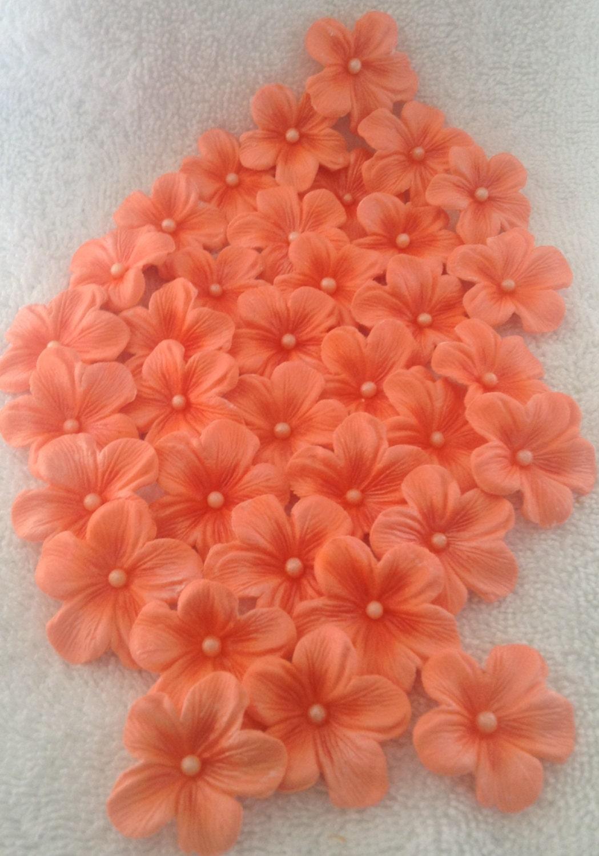 peach color decorations | My Web Value