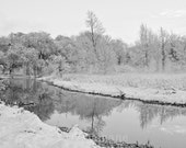 Another world 8x12 fine art photo, trees, snow, winter, river, Narnia, white