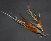 Long Brown and Grizzly Feather Earrings 9-11 inches
