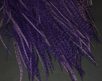 5  Purple Grizzly Feathers for Feather Extensions Salon Grade 8-12 inches