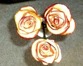 3 Dried Apple Roses Bouquet Handcrafted