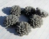 10 CHRYSANTHEMUM Cabochons - 20mm - Gray Color