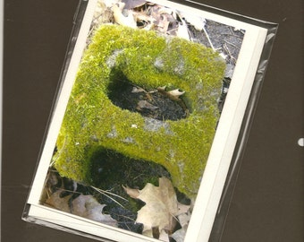 The Letter A Nature's Alphabet Photography Blank Note Card - How you Doing A