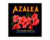 Blank Journal - Azalea Brand Fruit  - Fruit Crate Art Print Cover
