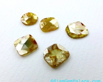 DiAMOND SLiCES. Faceted. Natural. Red / Orange Inclusions on Yellow Body. Free Form. 1 pc. 0.90 cts. 7.2X7.5 mm (Dia272E)