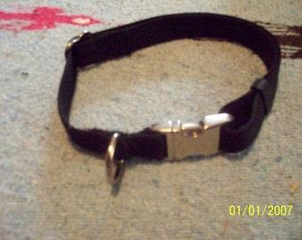 Carter Pet Supply Adjustable Dog Collar 3/4 Webbing