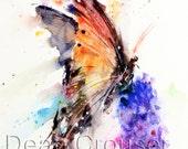 BUTTERFLY & FLOWER Watercolor Print by Dean Crouser