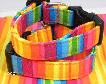 Dog Collar Colorful Bold Rich Stripes of Yellow Pink Blue Green Orange Rainbow Fun Dog Collar  Adjustable with D Ring Choose Size