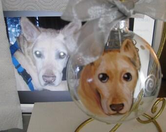 Memorial Ornament Hand Painted  Pet Portrait Animal  Cartoon  Custom  Personalized Cat Dog