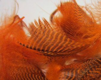 duck feathers Teal Flank Orange Teal-03 craft feathers fly tying fascinators and more