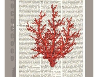 Red CORAL4 -ARTWORK  printed on Repurposed Vintage Dictionary page 8 x 10 -Upcycled Book Print