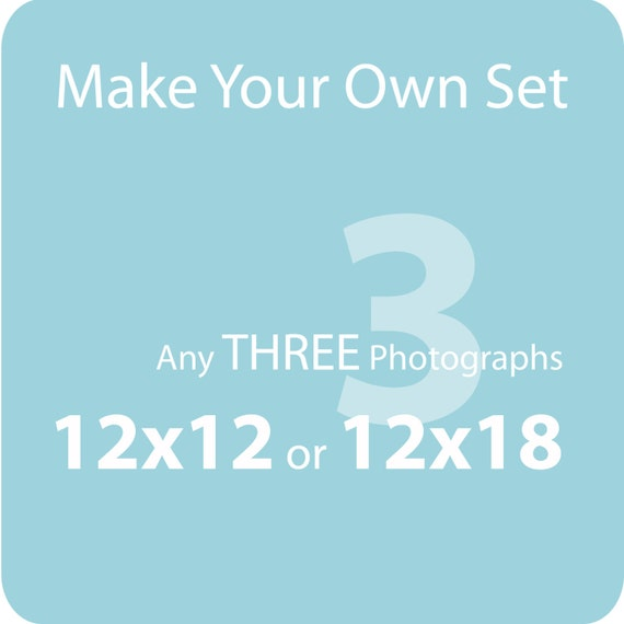 Make Your Own Set of THREE (12x12 or 12x18) - gift item, home decor, for the home - SAVE OVER 20% off the individual print price
