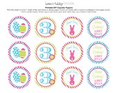 DIY, Easter Birthday Cupcake Toppers