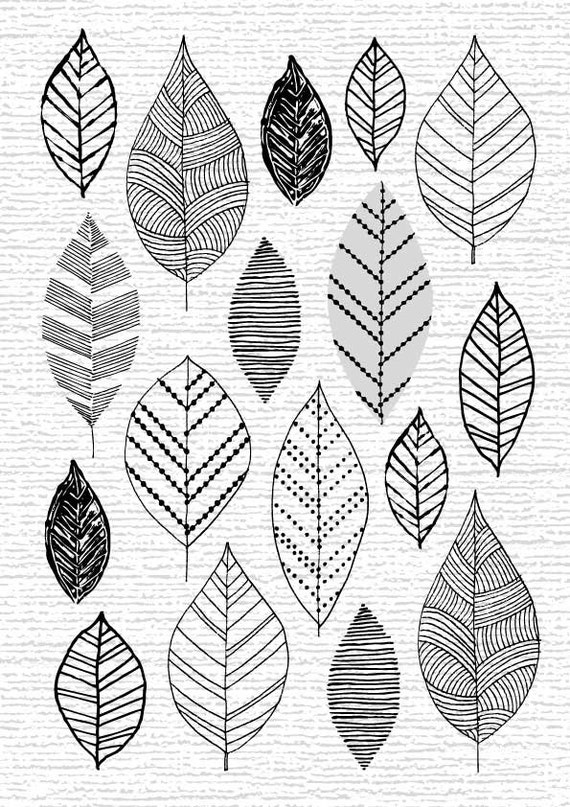 So Many Leaves, So Little Time, limited edition giclee print