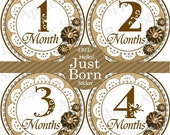 Baby Monthly Stickers FREE Baby Month Milestone Sticker Baby Month Stickers Baby Girl Bodysuit Stickers Doily Vintage Ivory Shabby Chic 123G