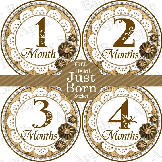 Baby Month Stickers, Monthly Baby Stickers, Baby Girl First Year Stickers, Baby Milestones, Baby Gift, Brown Doily Vintage Shabby Chic 123G