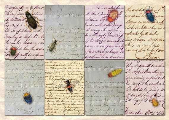 Antique Handwriting Letters Backgrounds Insects Bugs ATC ACEO Size Decoupage Digital Collage Sheet DIY Instant Download 014