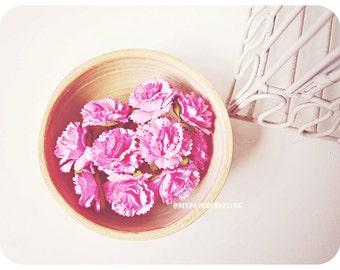 Carnation paper flower  / pack