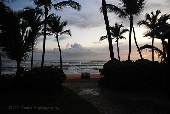 Tropical Seascape Photography, Dominican print, Beach Fine Art, Palm Tree wall art, silhouette art