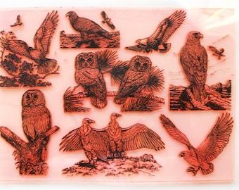 "Birds of Prey / Clear stamps large sheet (7""x10"") UM FLONZ 403-107"