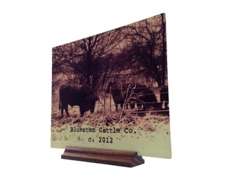 PERSONALIZED METAL SIGNS-High Resolution Personalized Metal 5X7 Signs -Custom Photo Displays