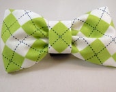 Dog Flower, Dog Bow Tie, Cat Flower, Cat Bow Tie - Green and White Argyle