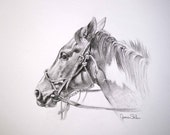 Get Along Home Susie, Original Horse Drawing