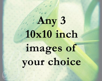 Any three 10x10 inch prints - your choice of unframed photographs