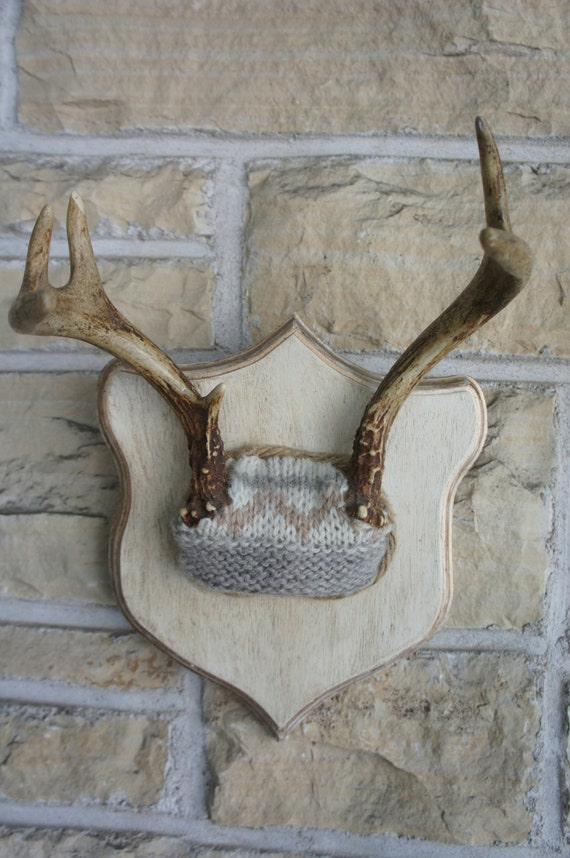 Deer Antlers Winter White Woodland Decor Horns Roe Deer Unique Taxidermy Wall Art