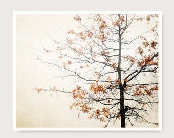 Fall Photography, Fall decor, Fall Tree Photo, fine art photography, winter tree, orange and brown, home decor, living room decor, landscape