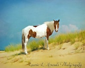 "Custom Listing 16x20 Horse on Beach ""Strength of Spirit"""