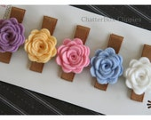 Baby Hair Clips Baby Barrettes Toddler Hair Clips Girls Hair Clips Pastel Pack Petite Rose Hair Clips