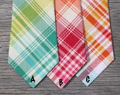 Preppy Plaid Tie -- Rainbow Plaid Tie -- Plaid Wedding Ties -- Ring bearer Tie -- Ties for Kids