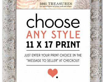 Any Print of Your Choice - 11 x 17 Inch