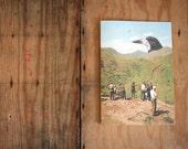 Tourists Mountains Giant Bird Eco Friendly Art Greeting Card