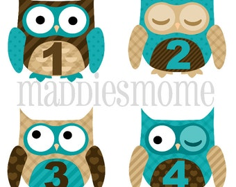 Monthly Baby Boy Stickers Baby Month Stickers, Monthly Bodysuit Sticker, Monthly Stickers Blue Brown (Big Owls)