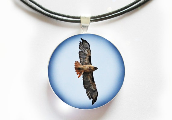 tailed hawk pendant bird jewelry glass tile by