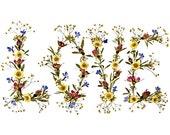 LOVE - Pressed Flower Art - Fine Art  8 x 10 Print - Unique I LOVE YOU Gift - Original Sweetheart Design