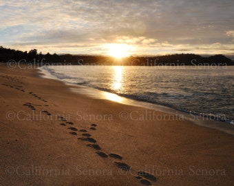 Sometimes You Just Need a Walk on the Beach - A 16x20 Photograph of Carmel-by-the-Sea's Sparkling Sand and Sunset